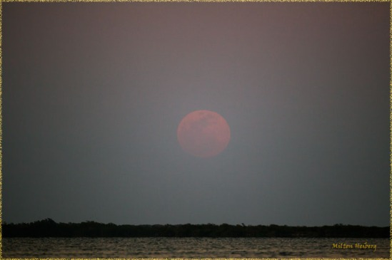 Super-Moon Rising
