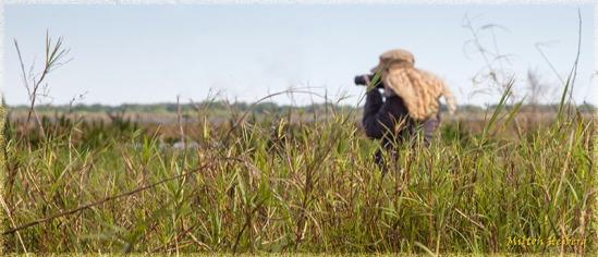 5 - Foreground Grass