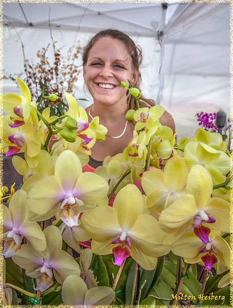 5. Trish Helm sells her orchids