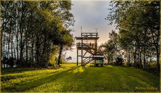 2. Observation Tower